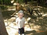 Dzień Dziecka na Piaskach